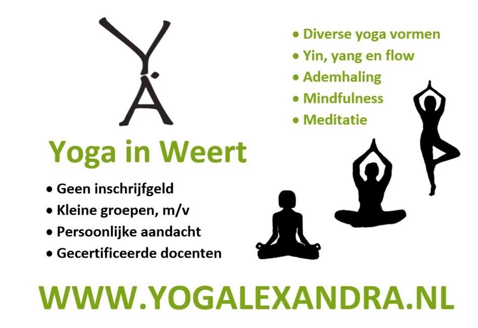 Rob Bongaerts Ashtanga Vinyasa flow yoga in Weert yogalexandra
